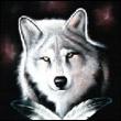 Аватар пользователя pokraska-remont200